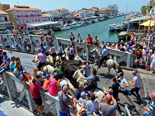 Port camargue - Office du tourisme grau du roi ...