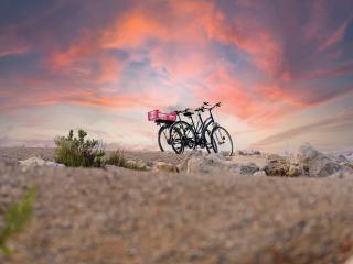 Camargue à vélo